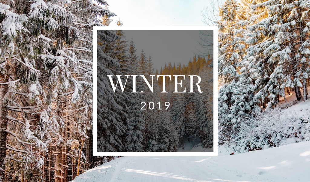 Welch Times – Winter Newsletter 2019